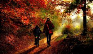 https://pixabay.com/fr/m%C3%A8re-fille-automne-famille-heureux-2800950/